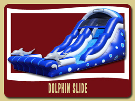 dolphin water slide and pool Moonwalk Holly Hill party house rental Lake Helen