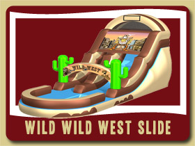 wild west water slide and pool Moonwalk Holly Hillbirthday party rentals Palm Coast