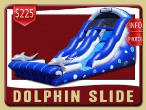 dolphin water slide inflatable party rental sanford price blue white
