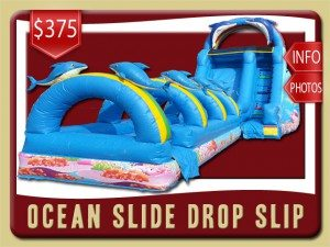 ocean slide slip drop party rental flagler beach price dolphins blue