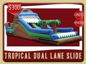 tropical dual water slide inflatable party rental st augustine price palm tree brown green blue